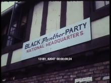 13181_42047_black_panthers.mov