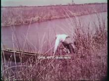 13158_19717_louisiana3.mov
