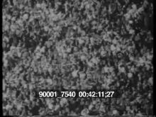 90001_7540_pt18.mov