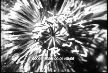 90001_5396_pt1.mov