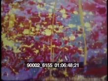90002_6155_04.mov