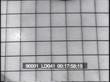90001_ld041_2-17.mov