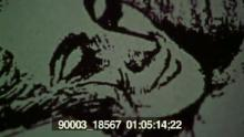 90003_18567_07.mov