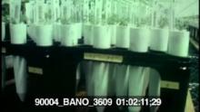 90004_BANO_3609_02.mov