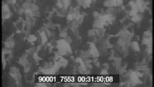 90001_7553_pt14.mov