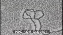 90002_42248_12.mov
