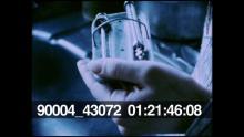 90004_43072_25.mov