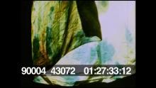 90004_43072_282.mov