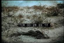 12553_US_infantry.mp4