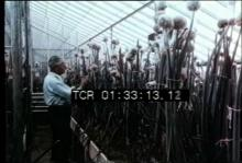 12556_agricultural_research.mp4
