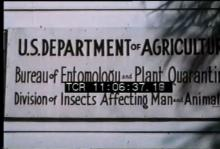 12557_insect_repellent.mp4