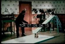 12567_rollerskating_penguin.mp4