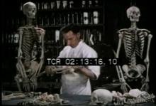 12571_skeleton_salesman.mp4