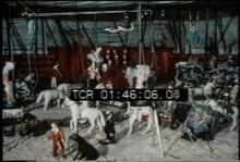 12571_miniature_circus.mp4