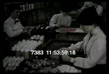 7383_cork_bottle.mp4