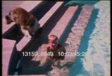 13159_9549_dog_pool.mp4