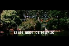 13154_9564_SF_Cinemascope17.mp4