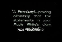 7624_pterodactyl.mp4