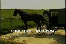 13160_11765_culture_amish#4_1.mov