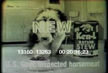 13160_13263_ken-l_ration_dog_food.mov