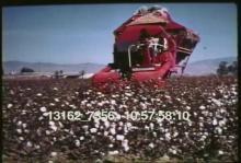 13162_7356_pesticide_farms.mov