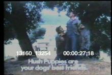 13160_13254_hush_puppies.mov