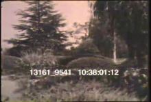 13162_9541_backyard_kids2.mov