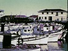 13173_003_fish_wharf.mov