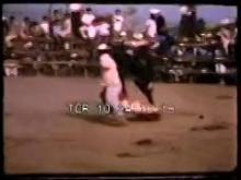 10339_riding_bull.mp4