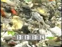 9442_garbage_dump.mp4