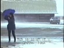 8812_umbrella.mp4