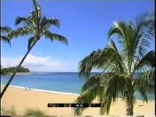 9037_hawaii.mp4
