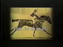 7168_muybridge_horse.mp4