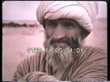 7195_Desert_Camels.mp4