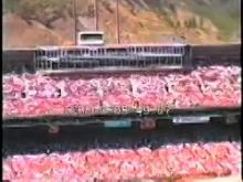 10224_giants_candlestick.mp4