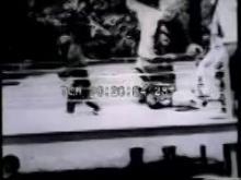 7502_cats_chimps_boxing.mp4