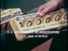 13172_10045_usda_eggs.mov