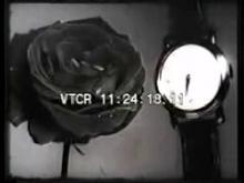 9127_time_lapse_watch.mp4