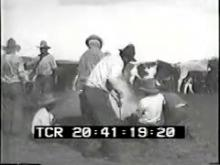 9656_Cattle_Ranchers.mp4