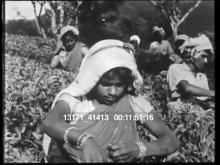 13171_41413_third_world_famine6.mov