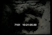 7101_WWIBattleFieldWounded2.mov