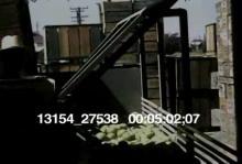 13154_27538_fruit_pickers5.mov