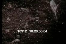 10312_cosmic_rays2.mov