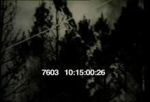 7603_wildfire.mov