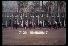 7129_horse_race.mov