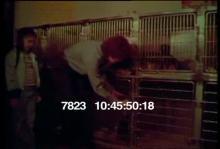7823_animal_shelter.mov