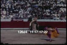 12624_purple_bullfighter.mov
