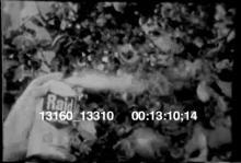 13160_13310_raid.mov