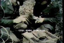 13161_40484_military_pigeons2.mov