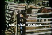 13160_13322_PSA_mustangs.mov